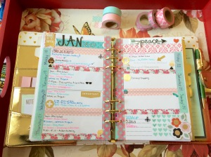 Marion Gold Planner3